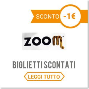 zoom-300x300